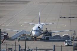 不揃いさんが、成田国際空港で撮影したYTOカーゴ・エアラインズ 737-36Q(SF)の航空フォト(飛行機 写真・画像)