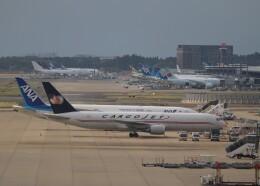 不揃いさんが、成田国際空港で撮影したカーゴジェット・エアウェイズ 767-35E/ER(BCF)の航空フォト(飛行機 写真・画像)