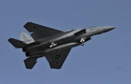 こびとさんさんが、入間飛行場で撮影した航空自衛隊 F-15J Eagleの航空フォト(飛行機 写真・画像)