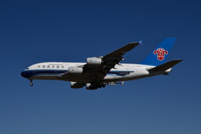 Tarochanさんが、成田国際空港で撮影した中国南方航空 A380-841の航空フォト(飛行機 写真・画像)