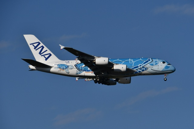 Tarochanさんが、成田国際空港で撮影した全日空 A380-841の航空フォト(飛行機 写真・画像)
