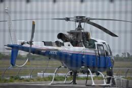 しめぎさんが、仙台空港で撮影した東邦航空 AS350B3 Ecureuilの航空フォト(飛行機 写真・画像)
