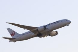 Fly Yokotayaさんが、伊丹空港で撮影した日本航空 787-8 Dreamlinerの航空フォト(飛行機 写真・画像)