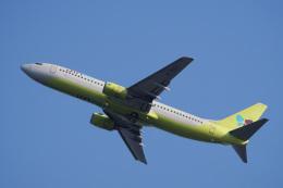 神宮寺ももさんが、関西国際空港で撮影したジンエアー 737-86Nの航空フォト(飛行機 写真・画像)