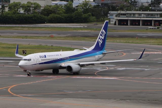 なみちゃんねるさんが、伊丹空港で撮影した全日空 737-881の航空フォト(飛行機 写真・画像)