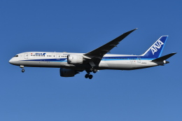 Deepさんが、成田国際空港で撮影した全日空 787-9の航空フォト(飛行機 写真・画像)