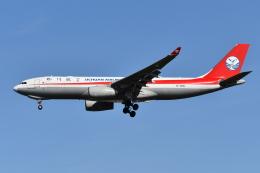 Deepさんが、成田国際空港で撮影した四川航空 A330-243Fの航空フォト(飛行機 写真・画像)
