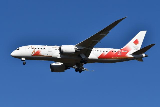 Deepさんが、成田国際空港で撮影した日本航空 787-8 Dreamlinerの航空フォト(飛行機 写真・画像)
