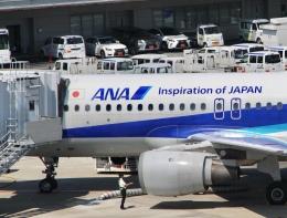 mahiちゃんさんが、羽田空港で撮影した全日空 A320-211の航空フォト(飛行機 写真・画像)