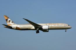アルビレオさんが、成田国際空港で撮影したエティハド航空 787-9の航空フォト(飛行機 写真・画像)