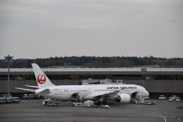 Anchorage2000さんが、成田国際空港で撮影した日本航空 787-9の航空フォト(飛行機 写真・画像)
