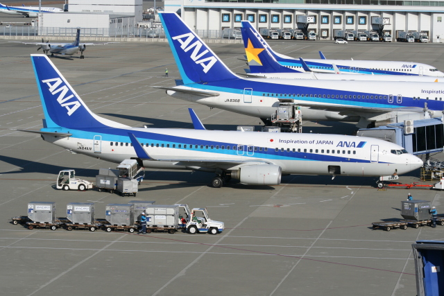 NIKEさんが、中部国際空港で撮影した全日空 737-881の航空フォト(飛行機 写真・画像)