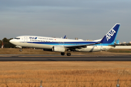 Gripen-YNさんが、伊丹空港で撮影した全日空 737-881の航空フォト(飛行機 写真・画像)
