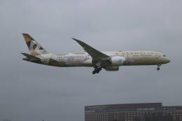 ヨッシューさんが、成田国際空港で撮影したエティハド航空 787-9の航空フォト(飛行機 写真・画像)