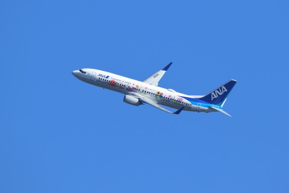 kaz787さんの全日空 Boeing 737-800 (JA85AN) 航空フォト