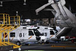 チャーリーマイクさんが、長崎空港で撮影した海上自衛隊 SH-60Jの航空フォト(飛行機 写真・画像)