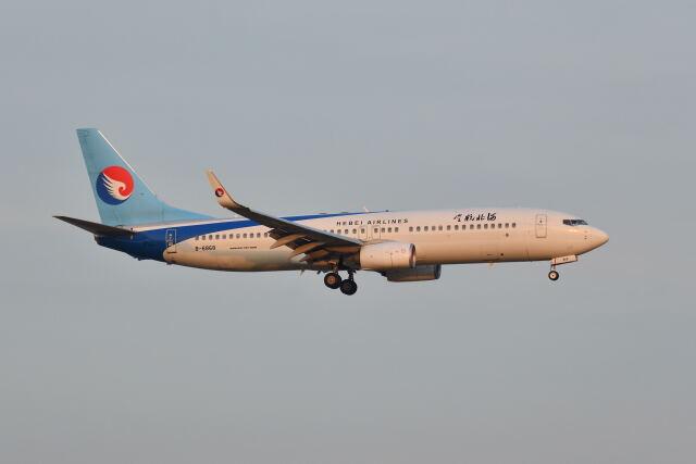ポン太さんが、スワンナプーム国際空港で撮影した河北航空 737-8LWの航空フォト(飛行機 写真・画像)