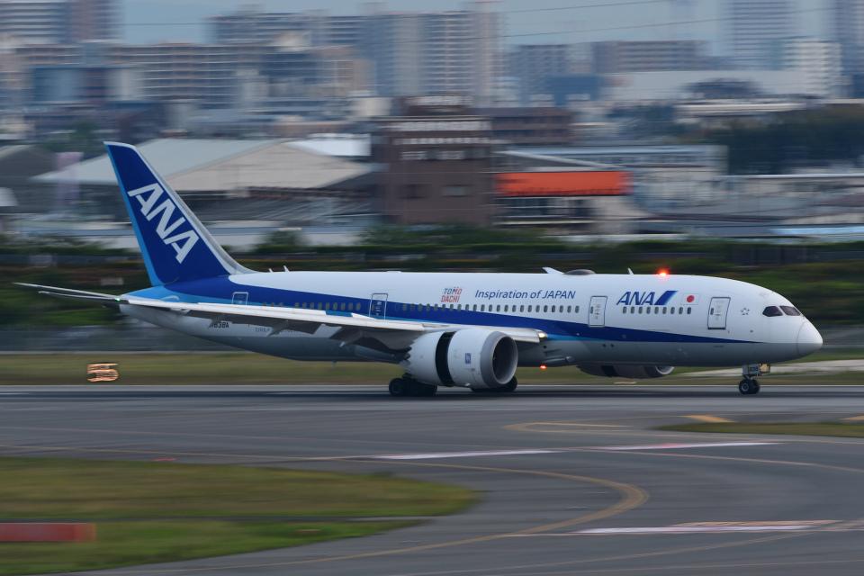 TOPAZ102さんの全日空 Boeing 787-8 Dreamliner (JA838A) 航空フォト