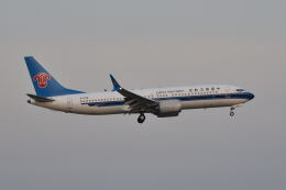 ポン太さんが、スワンナプーム国際空港で撮影した中国南方航空 737-8-MAXの航空フォト(飛行機 写真・画像)