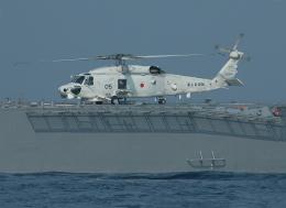 航空フォト:8405 海上自衛隊 SH-60K