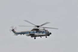 mahiちゃんさんが、羽田空港で撮影した海上保安庁 EC225LP Super Puma Mk2+の航空フォト(飛行機 写真・画像)