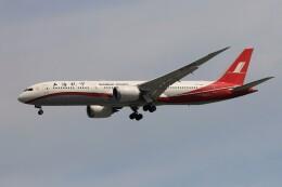 フッ軽の極美さんが、シンガポール・チャンギ国際空港で撮影した上海航空 787-9の航空フォト(飛行機 写真・画像)