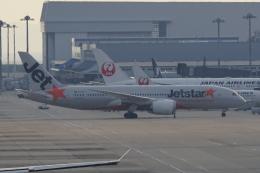 神宮寺ももさんが、関西国際空港で撮影したジェットスター 787-8 Dreamlinerの航空フォト(飛行機 写真・画像)