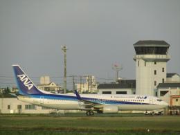ノリださんが、宮古空港で撮影した全日空 737-881の航空フォト(飛行機 写真・画像)