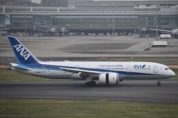 PIRORINGさんが、羽田空港で撮影した全日空 787-8 Dreamlinerの航空フォト(飛行機 写真・画像)