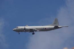 JA8037さんが、厚木飛行場で撮影した海上自衛隊 P-3Cの航空フォト(飛行機 写真・画像)