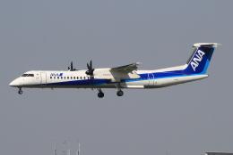 キイロイトリさんが、伊丹空港で撮影したANAウイングス DHC-8-402Q Dash 8の航空フォト(飛行機 写真・画像)