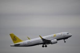 Anchorage2000さんが、成田国際空港で撮影したロイヤルブルネイ航空 A320-251Nの航空フォト(飛行機 写真・画像)