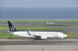 Anchorage2000さんが、羽田空港で撮影した全日空 737-881の航空フォト(飛行機 写真・画像)