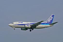 れぐぽよさんが、小松空港で撮影したエアーネクスト 737-5Y0の航空フォト(飛行機 写真・画像)