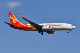 Deepさんが、成田国際空港で撮影した海南航空 737-86Nの航空フォト(飛行機 写真・画像)