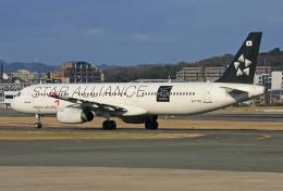 tsubameさんが、福岡空港で撮影したアシアナ航空 A321-231の航空フォト(飛行機 写真・画像)