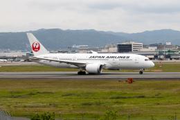 JA1118Dさんが、伊丹空港で撮影した日本航空 787-8 Dreamlinerの航空フォト(飛行機 写真・画像)