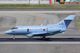 Hii82さんが、名古屋飛行場で撮影した航空自衛隊 U-125A(Hawker 800)の航空フォト(飛行機 写真・画像)