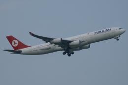 木人さんが、成田国際空港で撮影したターキッシュ・エアラインズ A340-311の航空フォト(飛行機 写真・画像)