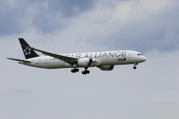おっしーさんが、成田国際空港で撮影した全日空 787-9の航空フォト(飛行機 写真・画像)