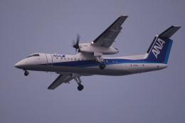 TOPAZ102さんが、伊丹空港で撮影したエアーニッポンネットワーク DHC-8-314Q Dash 8の航空フォト(飛行機 写真・画像)