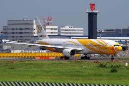 航空フォト:HS-XBE ノックスクート 777-200