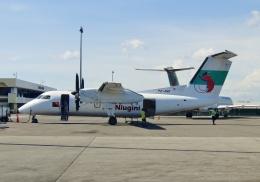 TA27さんが、ジャクソン国際空港で撮影したニューギニア航空 DHC-8-202Q Dash 8の航空フォト(飛行機 写真・画像)