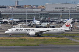 qooさんが、羽田空港で撮影した日本航空 787-9の航空フォト(飛行機 写真・画像)