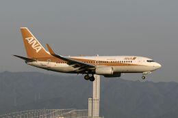 hiroki_h2さんが、関西国際空港で撮影した全日空 737-781の航空フォト(飛行機 写真・画像)