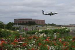 flyskyさんが、成田国際空港で撮影したオーロラ A319-111の航空フォト(飛行機 写真・画像)