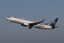 M.Chihara_1さんが、シアトル タコマ国際空港で撮影したデルタ航空 737-832の航空フォト(飛行機 写真・画像)