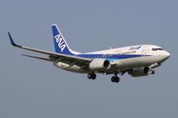 kinsanさんが、石垣空港で撮影した全日空 737-781の航空フォト(飛行機 写真・画像)