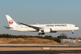 Ariesさんが、成田国際空港で撮影した日本航空 787-9の航空フォト(飛行機 写真・画像)