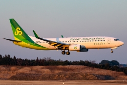 Ariesさんが、成田国際空港で撮影した春秋航空日本 737-86Nの航空フォト(飛行機 写真・画像)